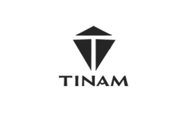 Tinam